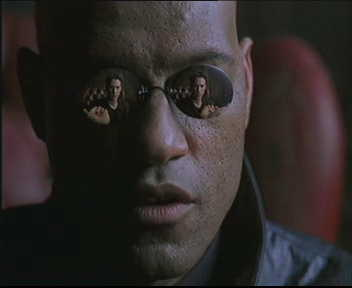 What if I told you I'm writing a programming language?